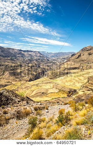 Colca Canyon, Peru,south America   Incas To Build Farming Terraces With Pond And Cliff  One Of Deepe