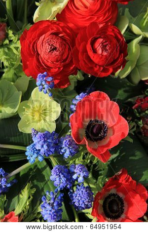 Spring Flowers In Red And Blue
