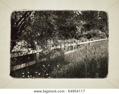 Country Fence In Sepia Tone