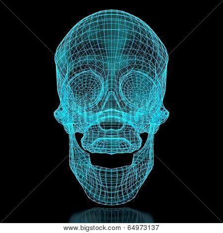 3D Mesh Skull