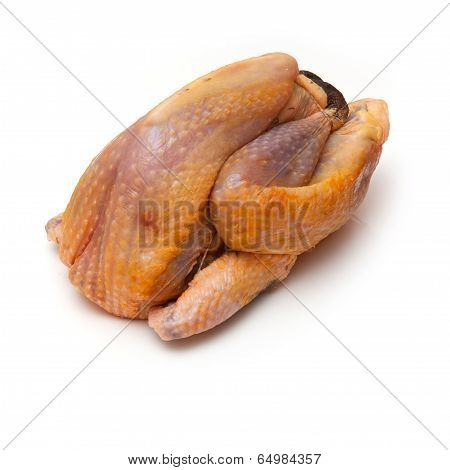 Guinea Fowl On A White Studio Background.