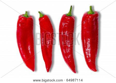 Four Red Hot Chilli Peppers
