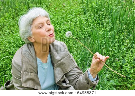 elderly woman sitting on a meadow in spring green grass and blowing on a dandelion