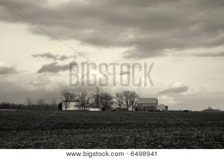 Illinois Farm Bw