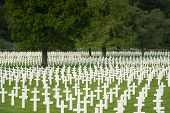stock photo of funeral  - White crosses filling the fresh green lawn at Henri - JPG