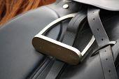pic of girth  - Close up of black leather saddle on horse back - JPG