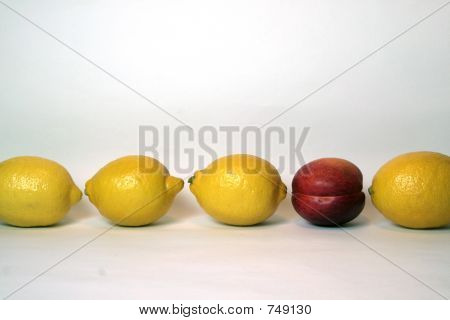 Lemons and Nectarine