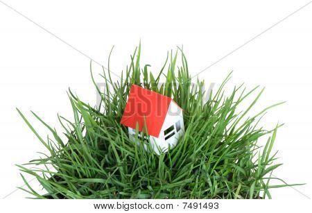 Casa en pasto