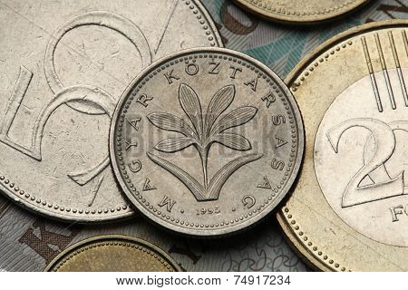 Coins of Hungary. Hungarian Colchicum (Colchicum Hungaricum) depicted in the Hungarian two forint coin.