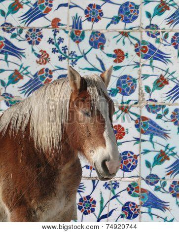 Iznik Tiles, Intricate Patterns