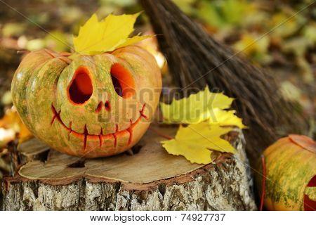 Pumpkins and broom for holiday Halloween on old tree stump