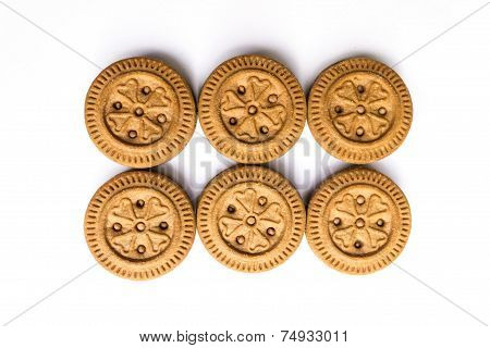 A chocolate base biscuits baked and kept on white background