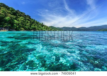 Coral Reef Under Crystal Clear Sea At Tropical Island