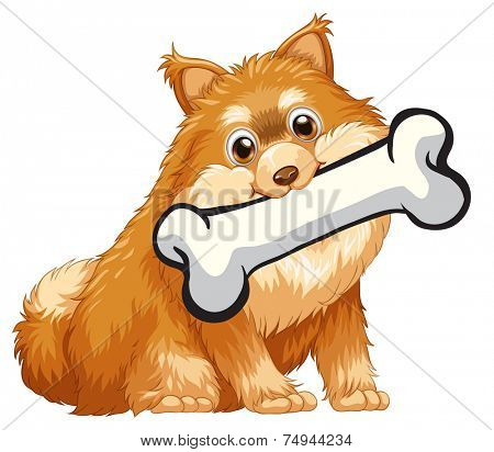 illustration of a close up dog