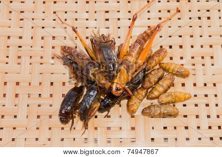 Crispy fried insects with a basketwork background