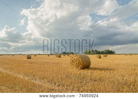 Yellow Haystack After Harvest