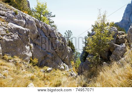 Gorge In Ai-petri Mountain On Black Sea Coast