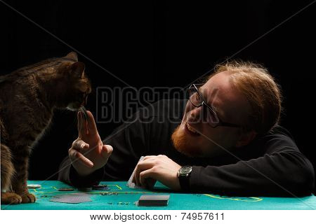Poker With Cat
