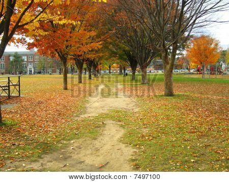 Burns Park In Ann Arbor