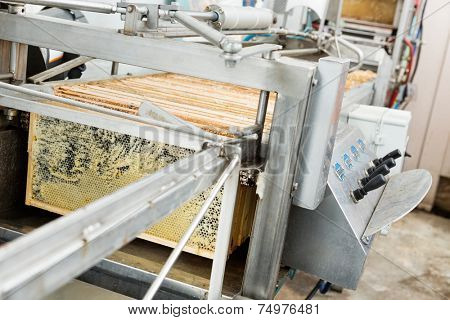 Honey extraction plant in beekeeping factory