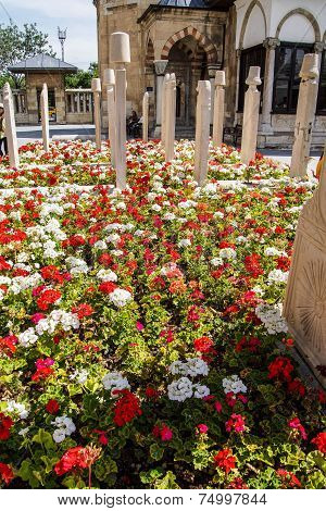Flowers In The Cemetery