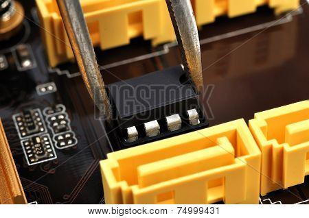 Tweezers Insert Microchip