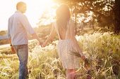 stock photo of lovers  - lovers walking in a field at sunset holding hands - JPG