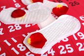 pic of menses  - Sanitary pads and rose petals on calendar background - JPG