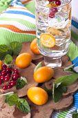 stock photo of kumquat  - Refreshing kumquat and red currant garnished cocktail - JPG