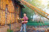 stock photo of crate  - Young happy farmer carrying crate with corn cobs on farm - JPG