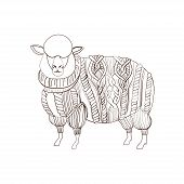 pic of cashmere goat  - Sheep in knitted sweater - JPG