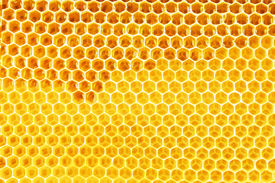 picture of honeycomb  - natural bee honey in honeycomb background - JPG