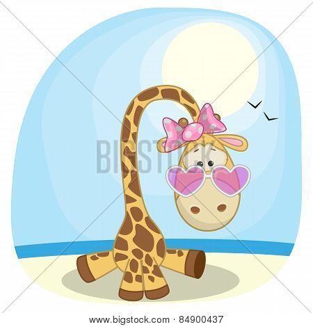 Giraffe On The Beach