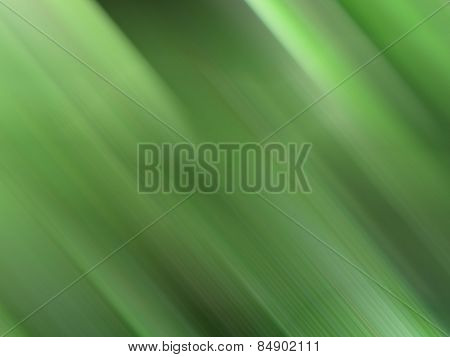 Abstract Green Gradient Background.