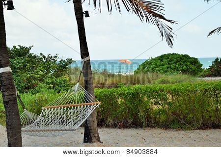 Picture of Hammock on the Beach