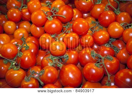 Group Of Fresh Tomatoes Background. Red Tomatoes On A Market Closeup