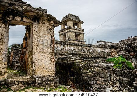 Palenque Mayan City. Ruins In The Jungle, Chiapas, Traveling Through Mexico.