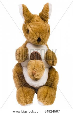 Close-up of stuffed kangaroo toys