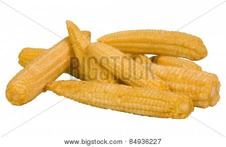 Close-up of corn cobs