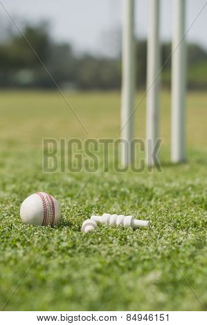 Cricket ball with bails on grass