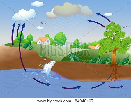 Illustration showing water cycle