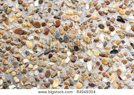 Conglomerate Variety Puddingstone