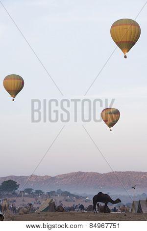 Hot air balloons over Pushkar Camel Fair ground, Pushkar, Ajmer, Rajasthan, India