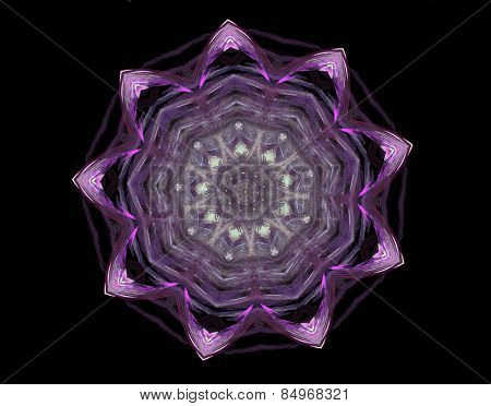 Beautiful Floral Ornament; Isolated On Black