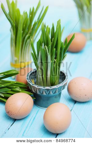 Ramson Sprouts And Boiled Eggs