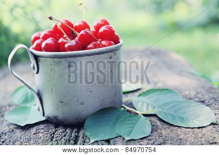 Cherries In Metal Mug
