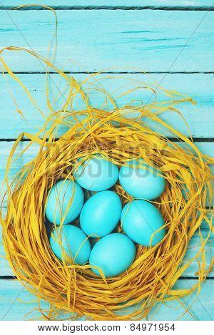 Blue Eggs  Top View
