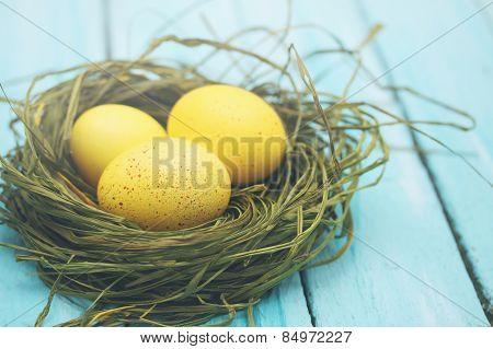 Large Yellow Eggs