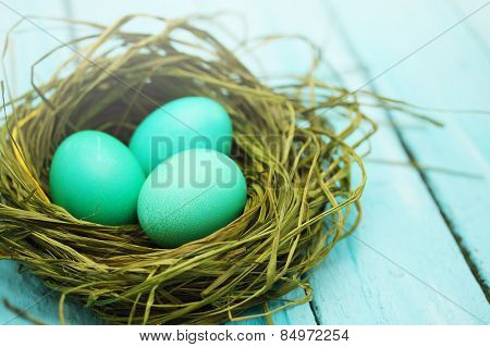 Large Turquoise Eggs
