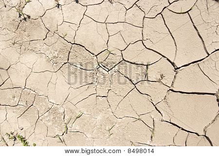 Dried Ground